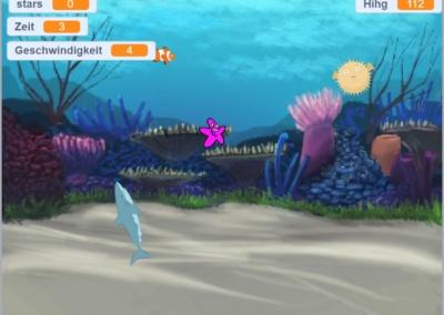 Unterwasser Seesterne – Nr. 5342